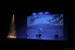 Sakura music with koto